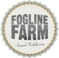 Foglinlogo2011